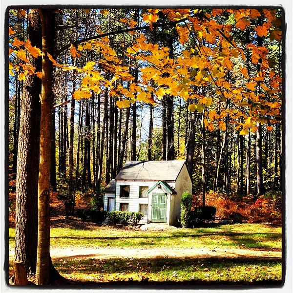 Fall Photograph - Little Cabin In The Woods by Amanda Enos