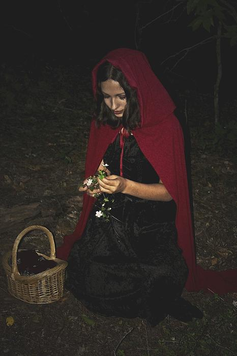 Little Red Riding Hood Photograph - Little Red Riding Hood by Cherie Haines