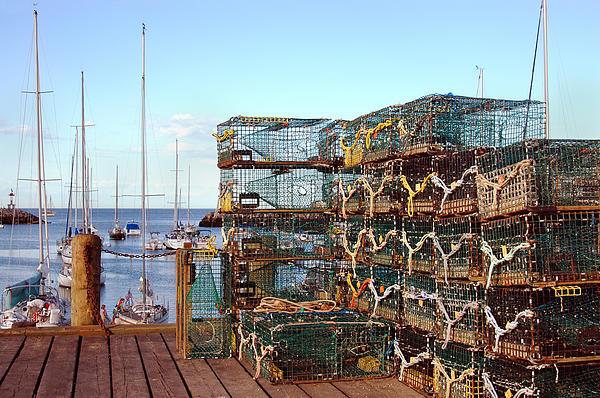 Lobster Photograph - Lobstah Traps by Joann Vitali
