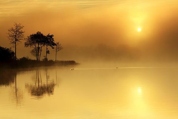 Loch Ard Photograph - Loch Ard Morning Glow by Grant Glendinning