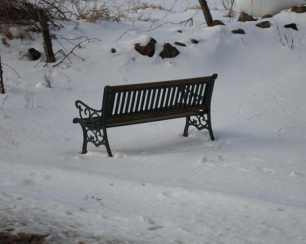 Bench Photograph - Lone Bench by Jenna Mengersen