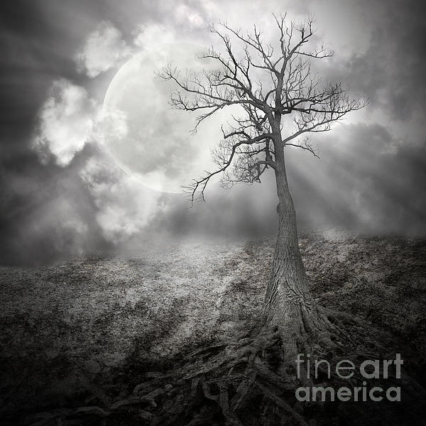 Aging Photograph - Lonely Tree With Roots Holding The Moon by Angela Waye