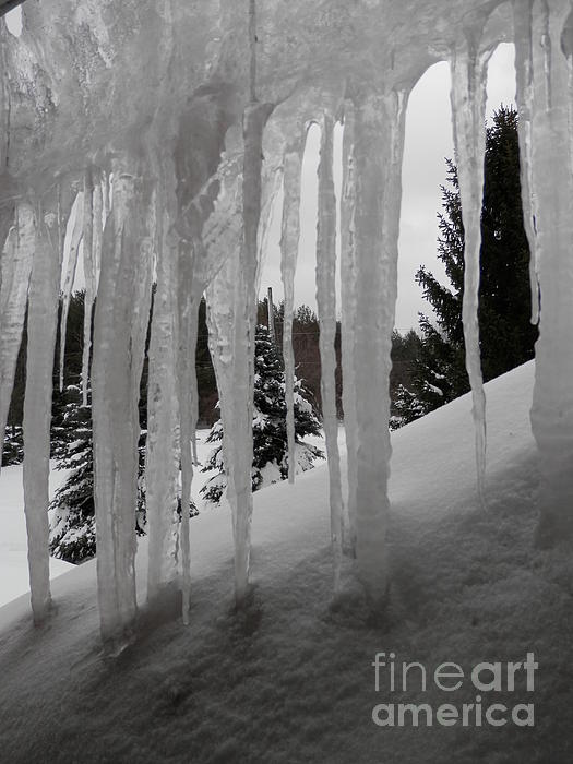 Icicles Photograph - Looking Out The Window by Margaret McDermott