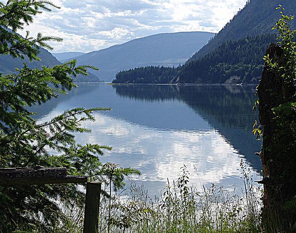 Jann Mixed Media - Lower Arrow Lake by Janet Ashworth