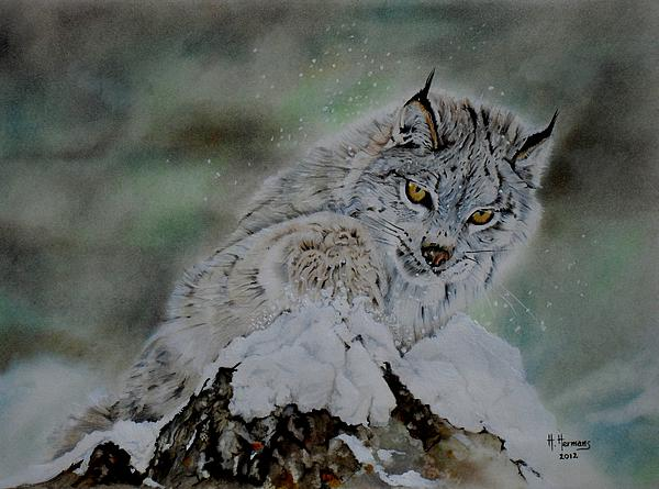 Animals Drawing - Lynx Playing With Snow by Hendrik Hermans