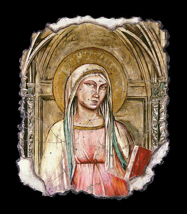 Spiritual Painting - Madonna Del Parto by Steve Bogdanoff