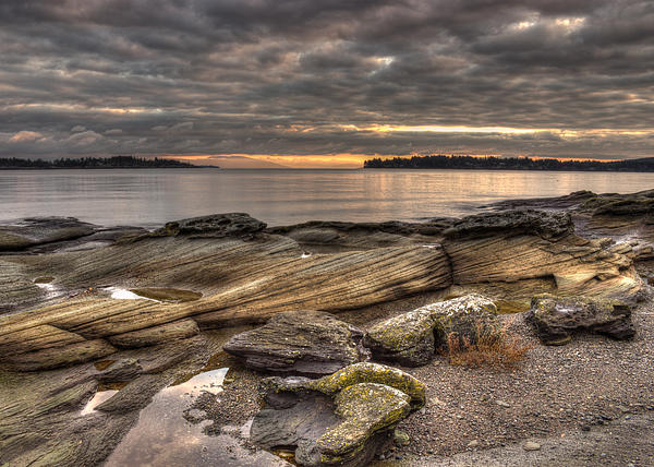 Landscape Photograph - Madrona Point by Randy Hall