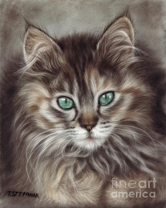 Cats Drawing - Maine Coon by Tobiasz Stefaniak