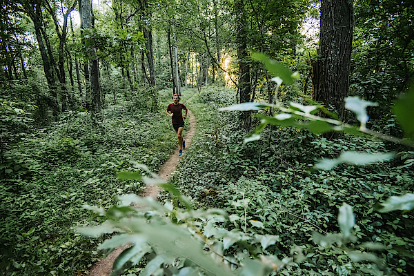 Man Jogging In Forest Along Mountain To Sea Trail, Asheville, North Carolina, Usa Photograph by Andy Wickstrom / Aurora Photos