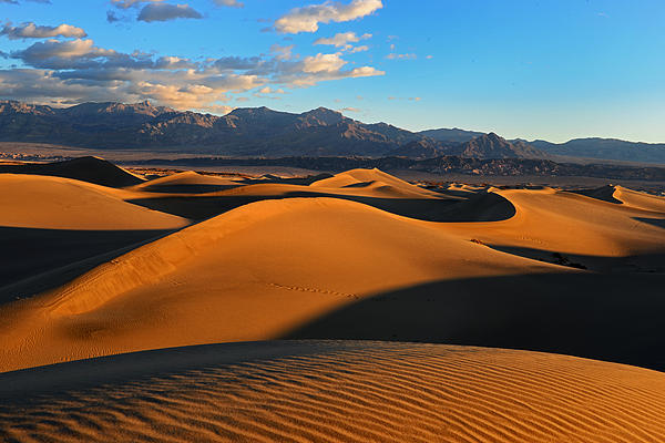 Sand Dunes Photograph - Mesquite Sand Dunes Death Valley by Peter Dang