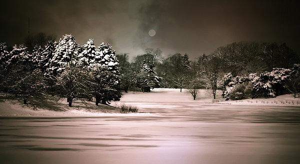 Snow Scene Photograph - Midnight Stillness by Julie Palencia