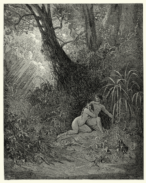 Miltons Paradise Lost -  Hid Themselves Amoung, The Thickest Trees Drawing by Duncan1890