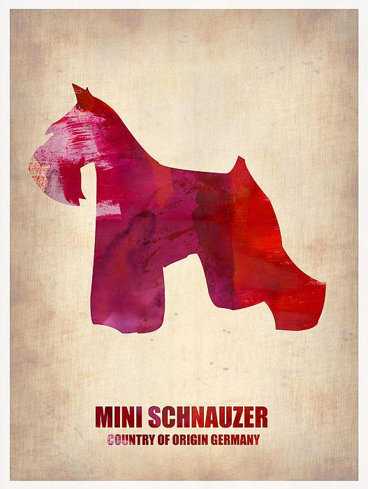Miniature Schnauzer Painting - Miniature Schnauzer Poster by Naxart Studio