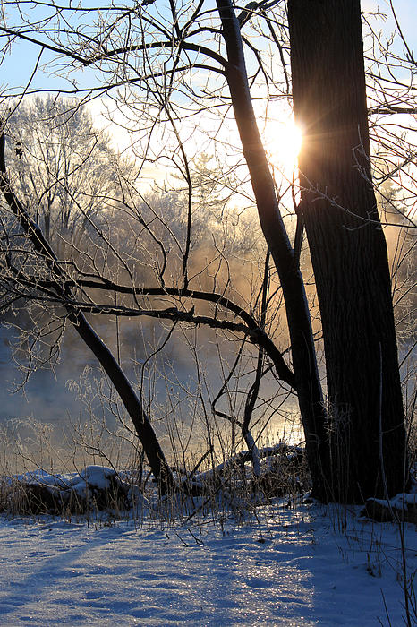 Grand River Photograph - Misty River Sunrise by Hanne Lore Koehler