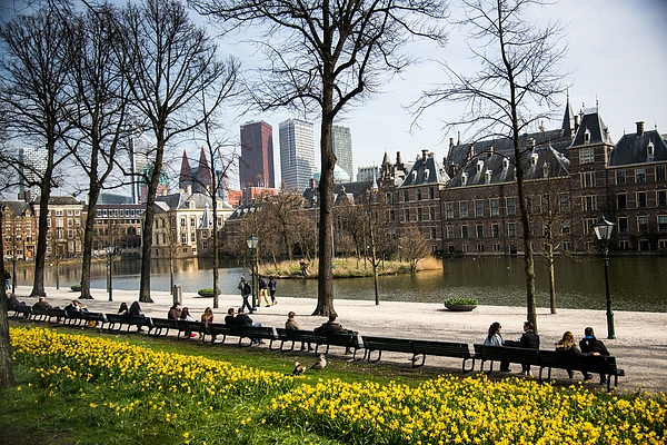 Modern And Old Buildings In The Hague, Netherlands Photograph by Education Images