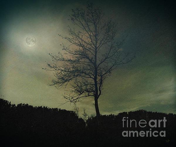 Digital Photograph - Moonspell by Bedros Awak