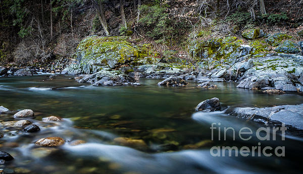 American River Photograph - Mossy Rocks by Mitch Shindelbower