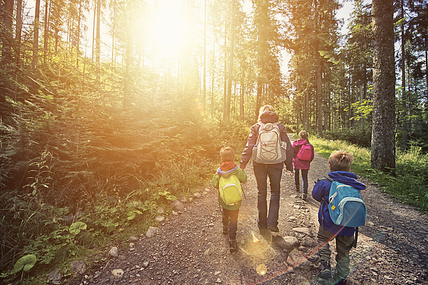 Mother And Kids Hiking In Sunny Forest Photograph by Imgorthand