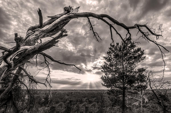 Clouds Photograph - Natures Arch by Debra and Dave Vanderlaan