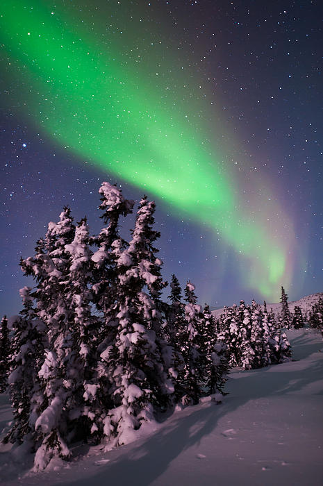 Alaska Photograph - Natures Canvas In The Northern Sky by Mike Berenson