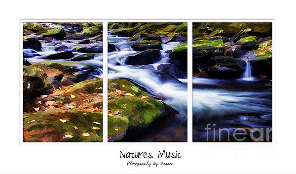 Autumn Photograph - Natures Music by Darren Fisher