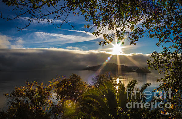 New Day Photograph - New Day by Mitch Shindelbower