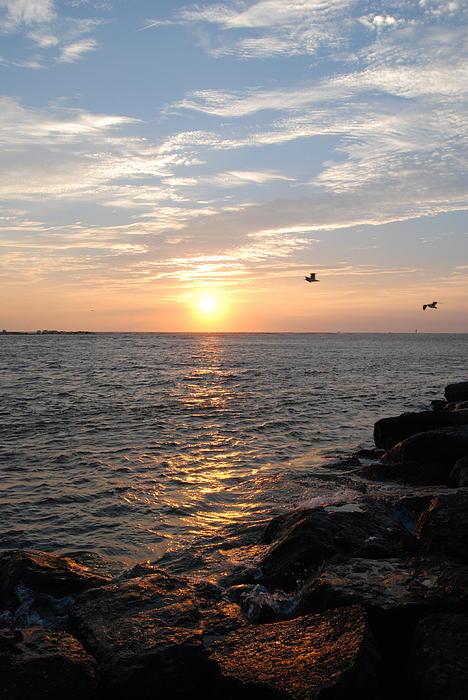 Sunrise Photograph - New Jersey Sunrise by Kathy Gibbons