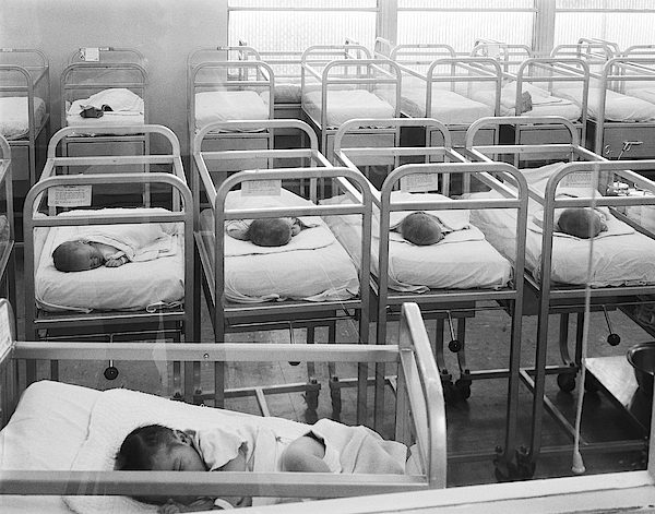 Newborn Baby Cribs Photograph by H. Armstrong Roberts