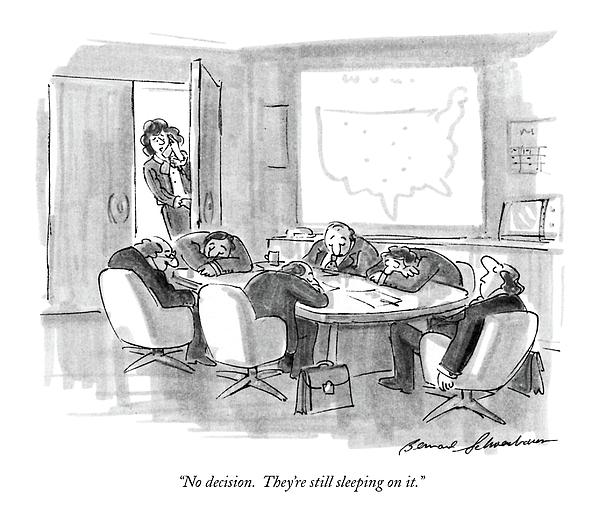 No Decision.  Theyre Still Sleeping On It Drawing by Bernard Schoenbaum