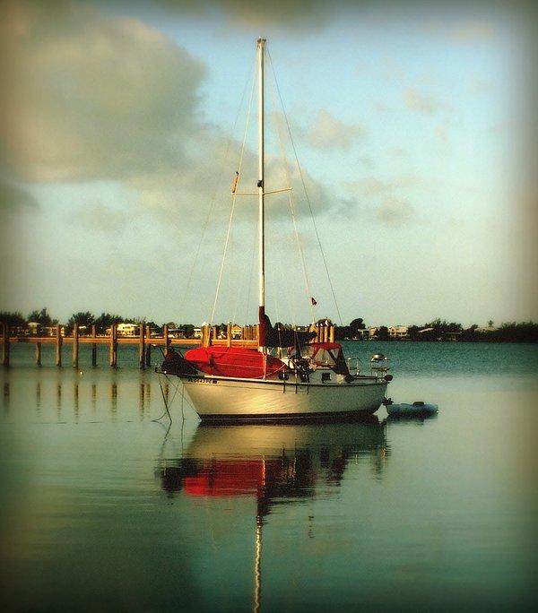 Sailboats Photograph - Noahs Jubilee by Karen Wiles