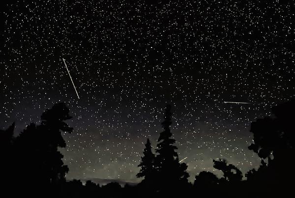 Galaxy Photograph - North Woods by Steve Harrington