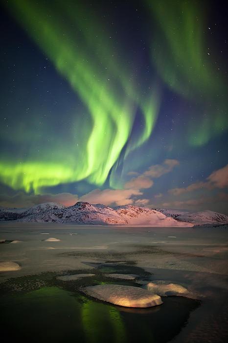 Aurora Borealis Photograph - Northern Lights Highway by Deryk Baumgaertner