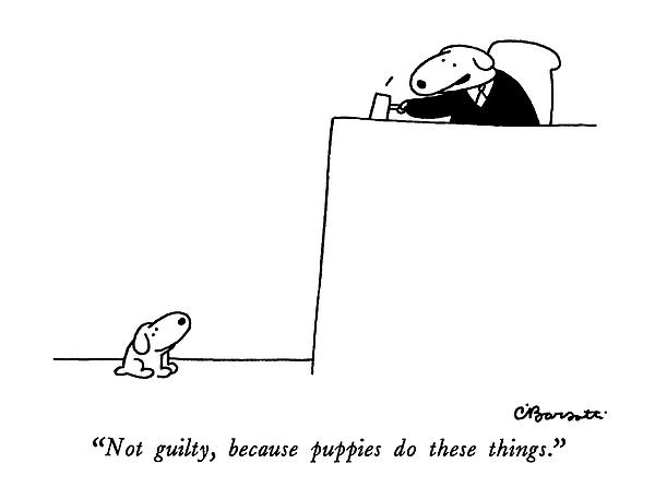 Not Guilty, Because Puppies Do These Things Drawing by Charles Barsotti