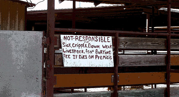 Signs Photograph - Not Responsible by R McLellan