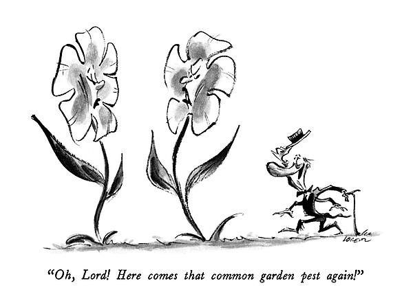 Oh, Lord!  Here Comes That Common Garden Pest Drawing by Lee Lorenz