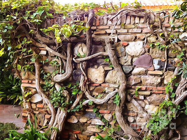 Roots Photograph - Old Garden Wall by Lutz Baar