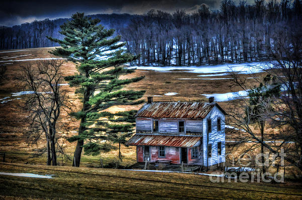 Old Home Photograph - Old Home Place Beside Pine Tree by Dan Friend