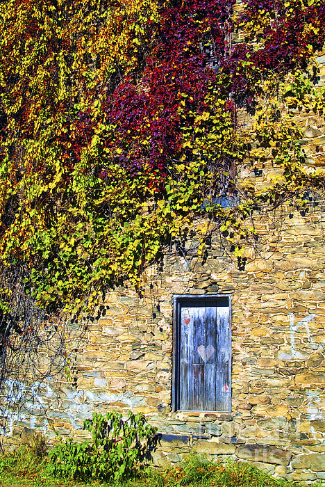 Mill Photograph - Old Mill Door by Paul W Faust -  Impressions of Light