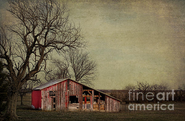 Old Photograph - Old Red Barn by Elena Nosyreva