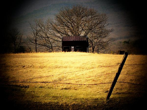 Shed Photograph - Old Shed by Michael L Kimble