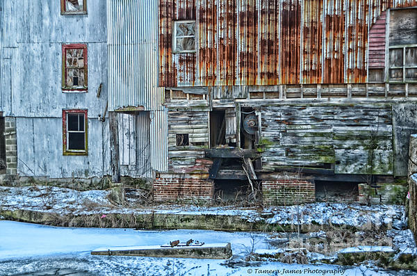 Feed Mill Photograph - Oldmill by Tamera James