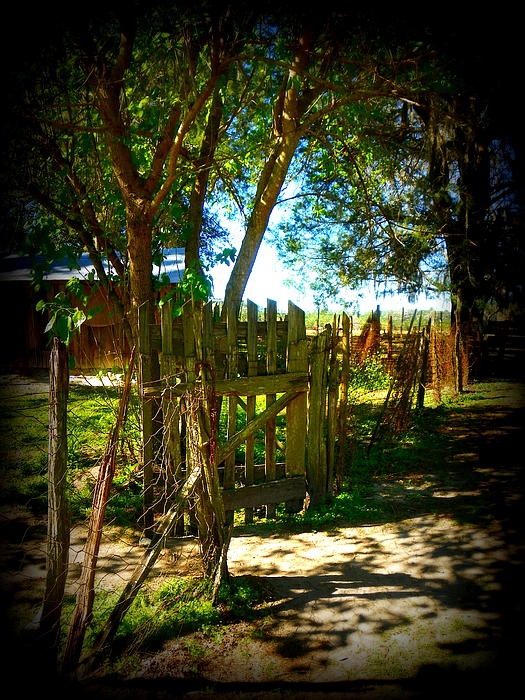 Old Florida Home Photograph - Ole Garden Gate by Sheri McLeroy