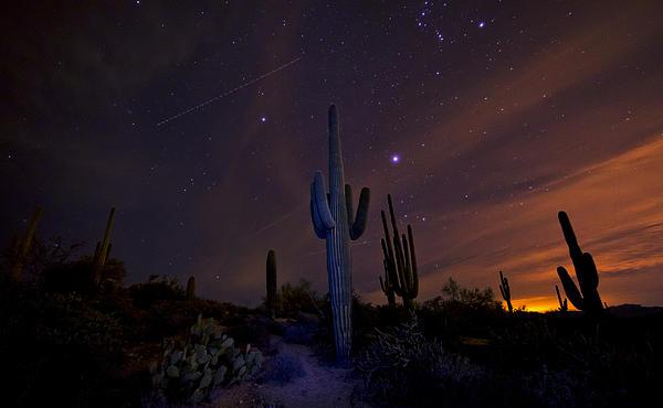 Arizona Photograph - On A Starlit Night  by Saija  Lehtonen