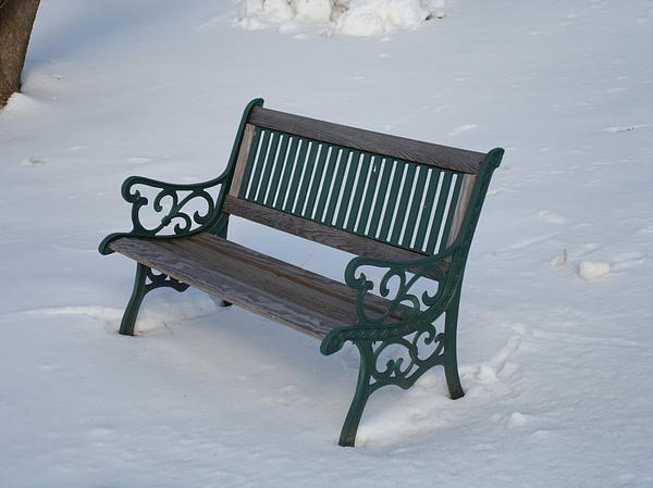Bench Photograph - One Bench by Jenna Mengersen
