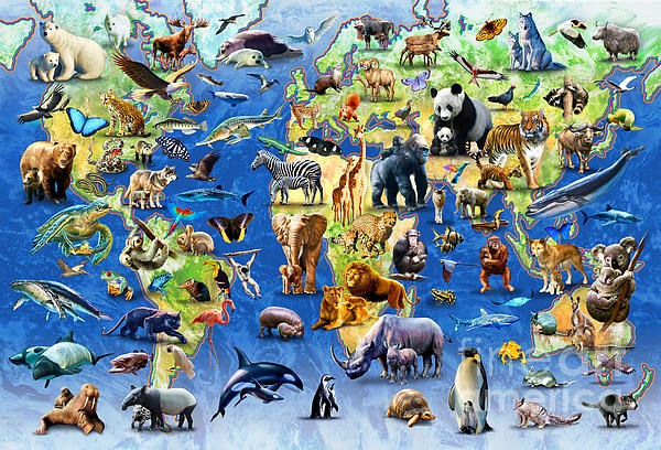 Adrian Chesterman Digital Art - One Hundred Endangered Species by Adrian Chesterman