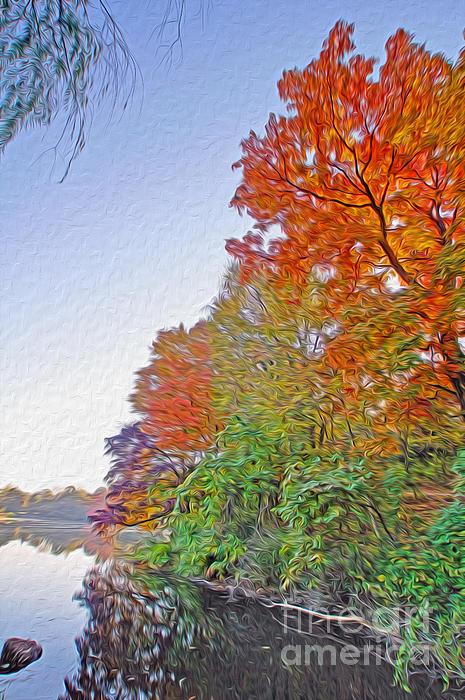 Landscape Photograph - Orange Trees by Nur Roy