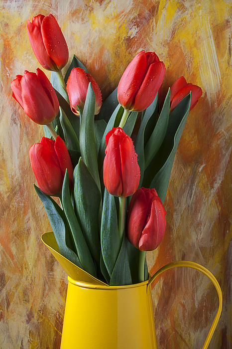 Orange Tulips Photograph - Orange Tulips In Yellow Pitcher by Garry Gay