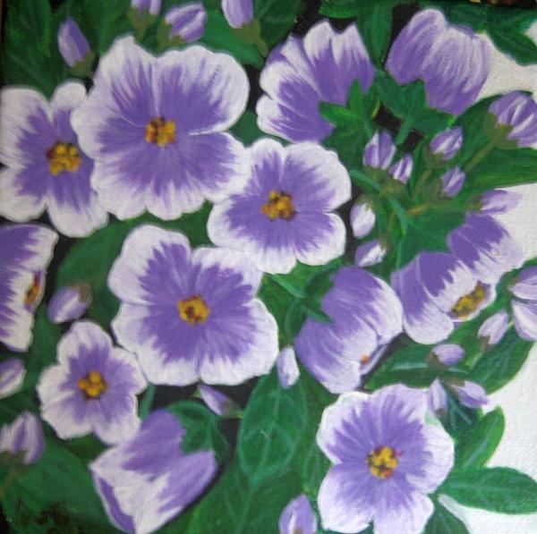 Flower Painting - Pansies by Usha Rai