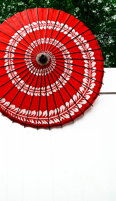 Abstract Photograph - Paper Umbrella With Swirl Pattern On Fence by Amy Cicconi