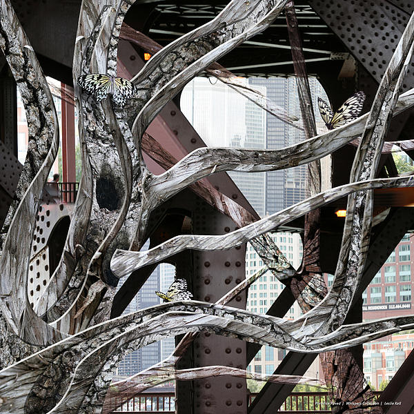 Trees Digital Art - Paradise Paved by Leslie Kell